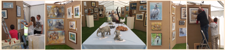 The Nature in Art Wildlife Exhibition 2017