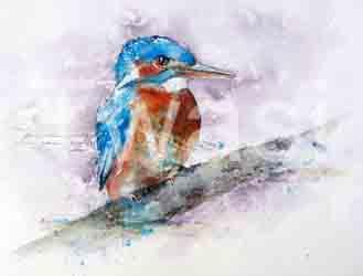 'Kingfisher' by Alison Board alisoncboard@gmail.com http://www.alisoncboard-fineart.co.uk
