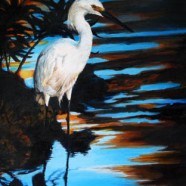 David Spencer - Evening Egret david.spencer@care4free.net
