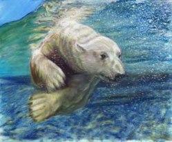 Jayne Farleigh - Sea Bear jaynefarleigh@gmail.com