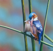 'Kingfishers Perch' by Cheryl Day Cherylday955@gmail.com http://www.cheryldayart.com