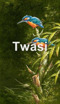 Martin Rumary - Kingfishers martinr@beechview.freeserve.co.uk http://www.martinrumary.com/