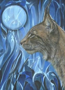 Debbie Hide - Dreams of a Lynx hide@btinternet.com http://www.dyhide.co.uk/