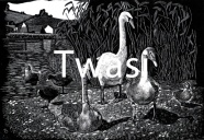 'Swans at Slapton' by Kenneth Dunn kennethdunn@blueyonder.co.uk