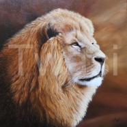 Tony Webb - Golden Lion webb.a3@sky.com