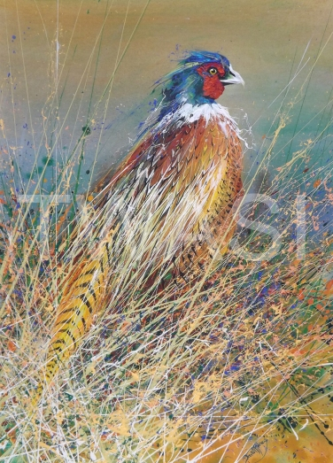 Pheasant by David Finney Ken Stroud Founders Award 2018