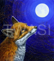 Elenor Ludgate - 'The fox and the moon' ludgatefineart@hotmail.co.uk https://devonsnatureinart.com http://butterflypaintings.net