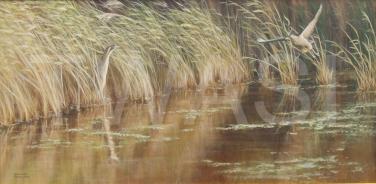 'Bitterns at Minsnere' by Frances Sullivan Bronze Citation 2018 Award