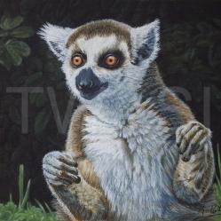 'Lemur' by Karen Burke karent_burke@sky.com