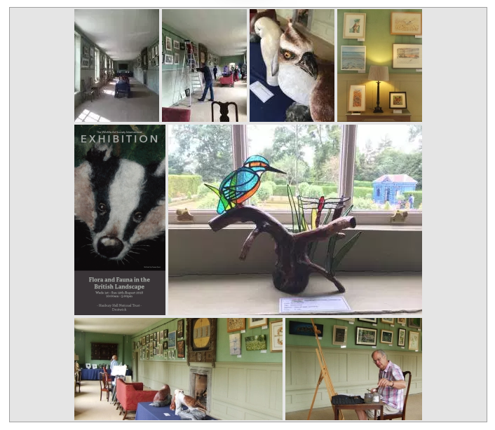 The Wildlife Art Society International Exhibition at Hanbury Hall 2018