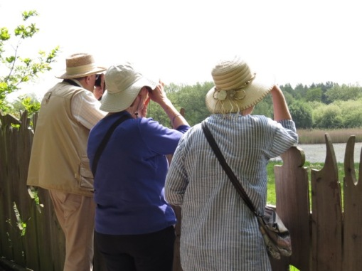 TWASI Visit to Sandwell Valley, 20th May 2018