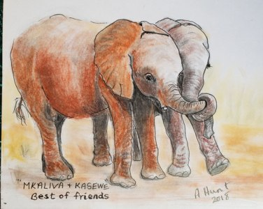 Mkaliva-and-Kasewe 2 by TWASI Member - Ann Hunt
