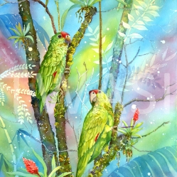 Linda Travers Smith - Red Lored Parrots thetravs@tiscali.co.uk www.travsart.net