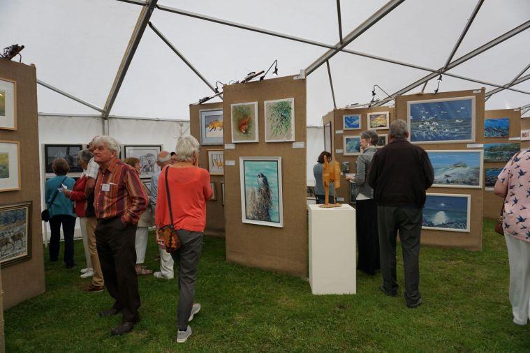 TWASI Nature in Art Exhibition 2019