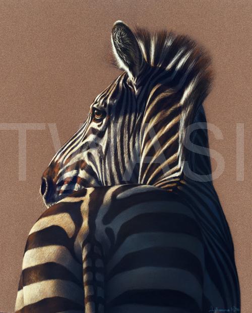 Julia Dubinina TWAS International Award Zebra