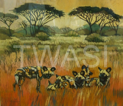 esley Connolly The Pollyanna Pickering Award African Landscape