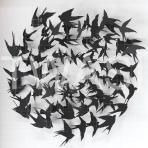 Sarah Trenchard - Birds info@sarahtrenchardart.co.uk