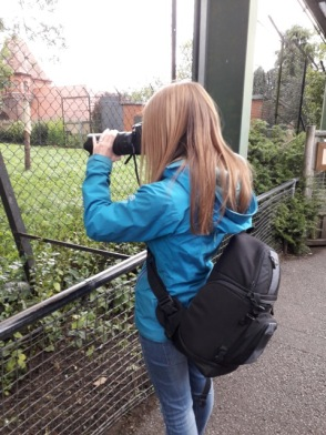 Chester Zoo 2