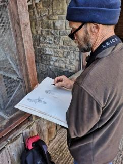 Trev Sketching