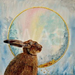 Hare Moongazing by Julie Wier julieweirart@aol.com https://www.julieweirart.co.uk