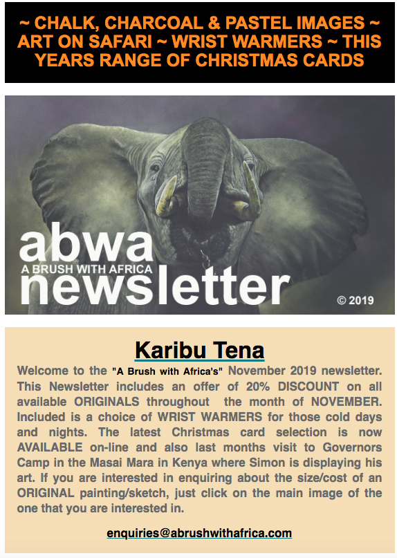 Brush with Africa November 2019Newsletter