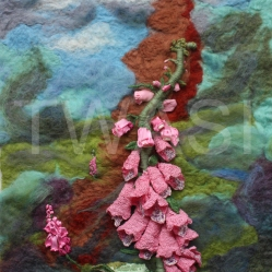 Helen Mlller - Forest of Foxgloves helen@helenmillerart.co.uk www.helenmillerart.co.uk