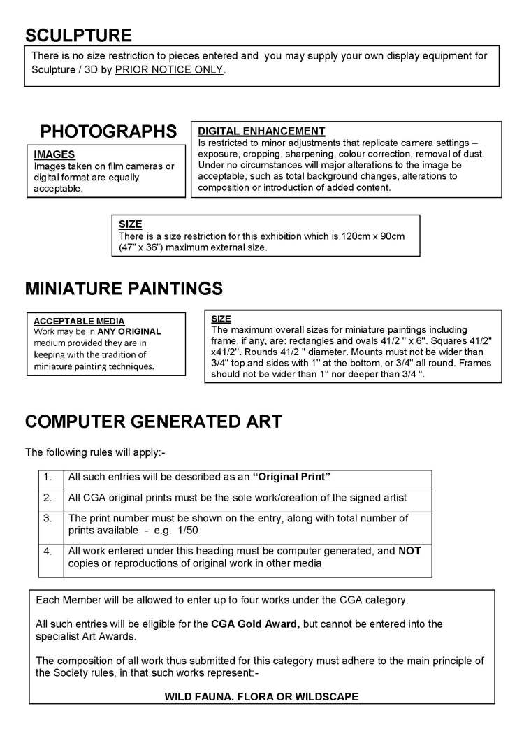 web site page regulations page 3