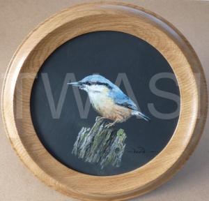 'Nutty' by David Spencer Acrylic on Welsh Slate Framed 30cms diameter £115