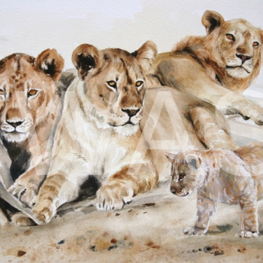 'Survivor' by Carol Barrett Watercolour Unframed Size 66 x 50cm £420