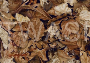 'Monochrome Beech' by Carole H Gaylard Acrylic Framed 35 x30 cm £140