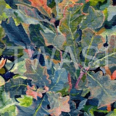 'Radiant Oak' by Carole H Gaylard Acrylic Framed 30.5 x 35cm £110