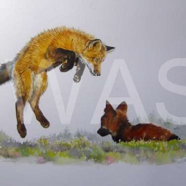 'Jump!' by Caroline Bletsis Watercolour Unframed 35 x 25 £275