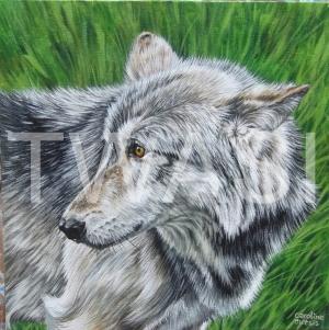 'Nuka' by Caroline Bletsis Acrylic Unframed 30 x 30 £350