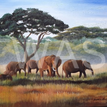'African Elephants' by Caroline Strong Unframed 41 x 51 Oil £650