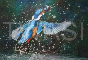 'Gotcha' by Caroline Strong Unframed 37 x 54 Watercolour £625