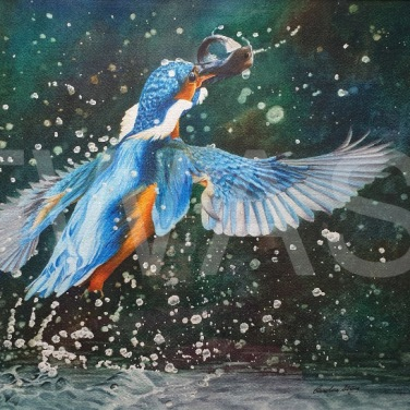 'Gotcha' by Caroline Strong Unframed 37 x 54 Watercolour £625
