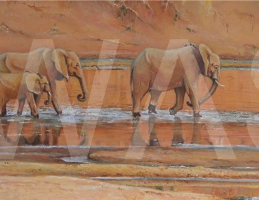 'Luangwa River Crossing' by Christine Smith Acrylic Unframed 30 x 80 £320
