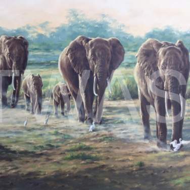 'Amboseli National Park' by Cynthia Chandler Oil Framed 64 x 89 £500