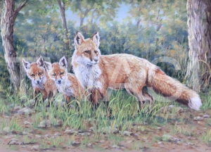 'Edge of the Woods' by Cynthia Chandler Pastel Mounted and framed 55 x 69 £400