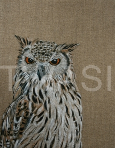 'Eagle Owl' by Christine Dadd Oil on Linen Framed 30 x 38 £ 250