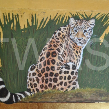'Amur Leopard' by Helen Rawlings Egg Tempura and Gold Leaf on gesso'd board Framed 32 x 26 £350