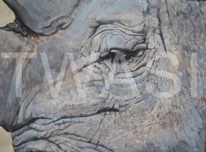 'Last of His Name' by Helen Rawlings Egg Tempura on gesso'd board Framed 30 x 24.5 £275