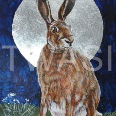 'Moon Hare' by Helen Rawlings Egg Tempura and Silver Leaf on gesso'd board Framed 25 x 20 £175