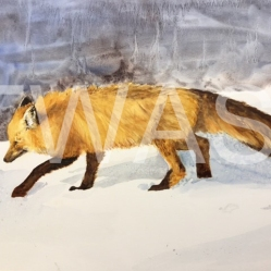 'The Red Fox' by Jan Watts Unframed watercolour 55 x 40 £375