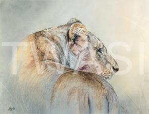 'Mara Mirage' by Julie Longdon Mixed media Framed 52 x 46 £695