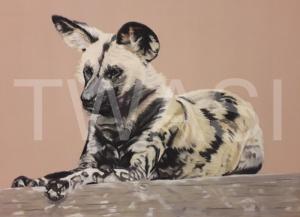 'Lycaon Pictus' by Karen Markham Pastel Pencil & Panpastel Unframed 58.42 x 45.72 £175