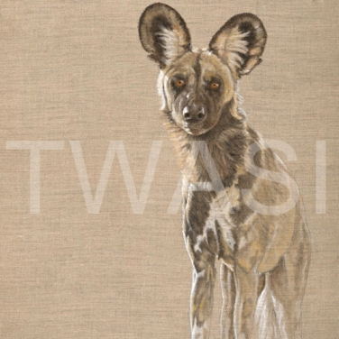 'Khwai Wild Dog' by Christine Dadd Oil on untreated Linen Box canvas unframed 61 x 92 £795