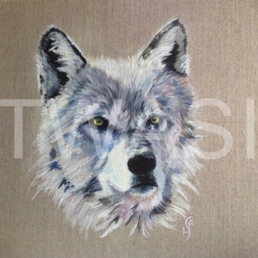'Wolf' by Leslie Read Acrylic Unframed 30.48 x 30.48 £100