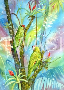 'Red Lored Parrots' by Linda Travers Smith Watercolour Unframed 30 x 50 £225