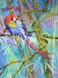 'Scarlet Macaw' by Linda Travers Smith Watercolour Unframed 30 x 50 £235